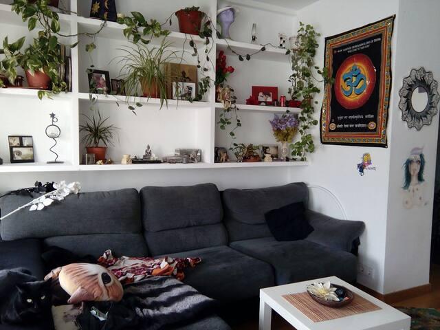 Ático dúplex,terraza y piscina - Madrid - Casa