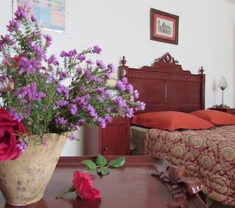 les volets rouges - Labastide-d'Armagnac - ゲストハウス