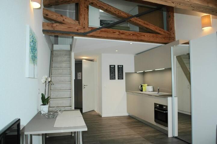 Newly renovated mezzanine apartment - Morges - Leilighet