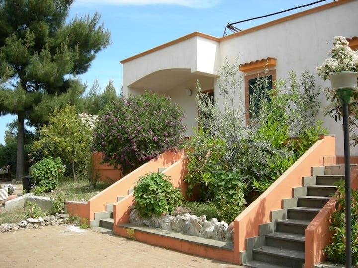 Villa Mimosa B trilocale per 5 persone  parcheggio