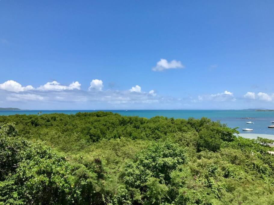 Breathtaking Views of the Caribbean Sea & Nature Reserve's Mangrove Forests below from Romantic Private Balcony