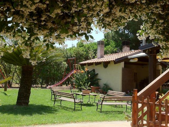 Agriturismo in Basilicata vicino al mare - Rotondella - Bed & Breakfast