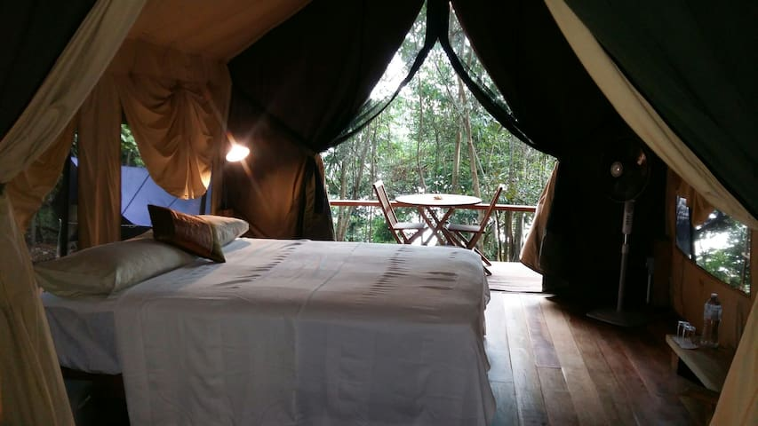 Perhentian Jungle Safari Tent 2