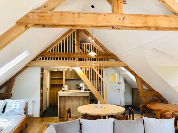 Loft 100m2 Lumineux et Confortable ☀️ Grand Jardin
