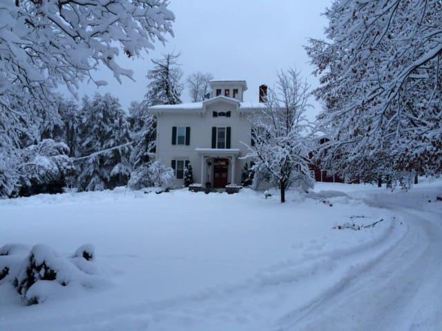 Antique Mansion