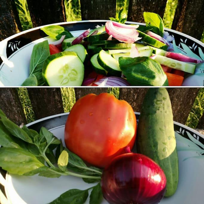 Summer farm organic products
