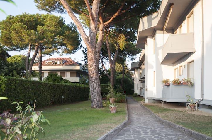 Casa Caterina Marina di Massa a due passi dal mare