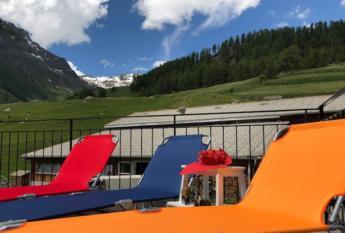ENGADIN HOLIDAYS - history with modern comfort