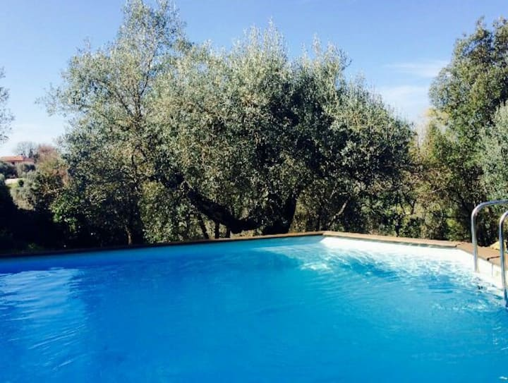 Villa Il Ramarro a Bolgheri
