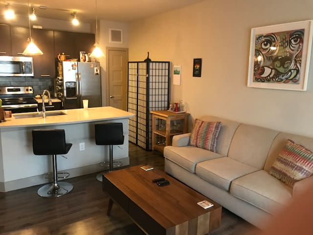 East Austin 1br close to transit, UT, Downtown