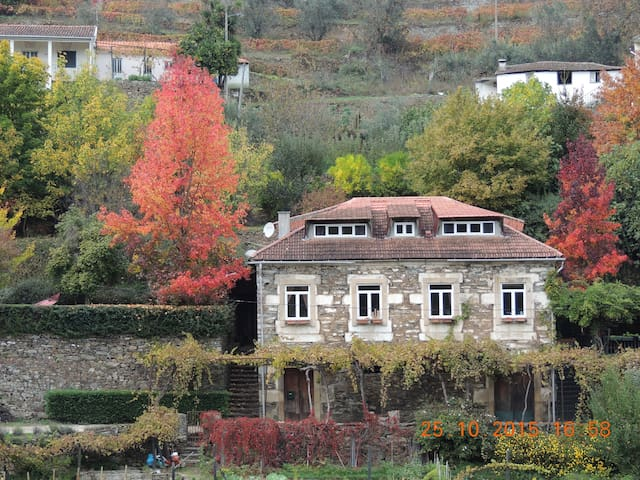 Douro Retreat with fresh garden - Vila Real - House