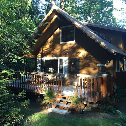 Cabin in Woods on Harstine Island - Shelton - Cabaña
