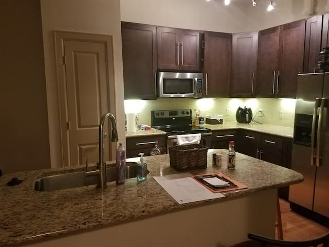 Entire Luxury Apt w/ 1-bed 1-bath, Medical Center