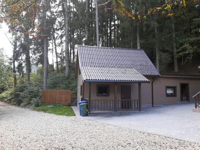 Дом с дровяной сауной у ручья - Mizarai, Alytaus apskritis, LT - House