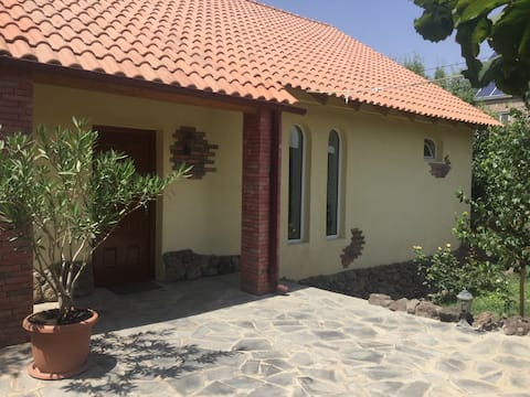 Yellow Guest House 1