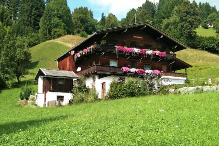 Detached chalet with lots of privacy, near Austria's biggest skiing area.