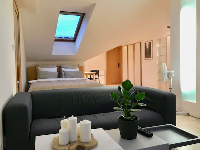 Attic studio with sofa and comfortable bed