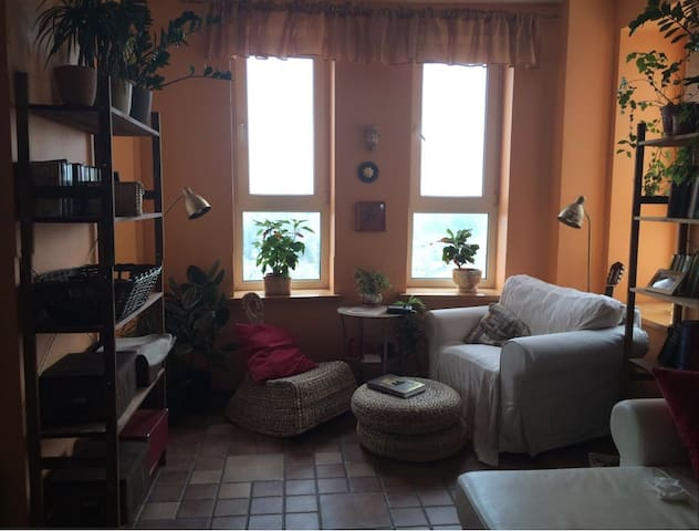 Sveta`s appartment