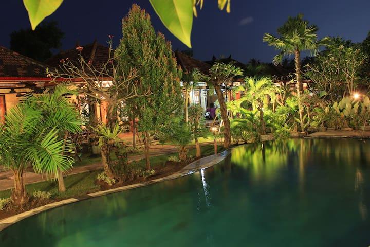 Lovina Sartaya2 Bungalow,AC and Swimming Pool