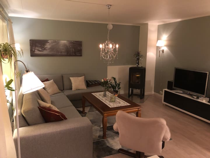 Holevegen Apartment B in Stryn