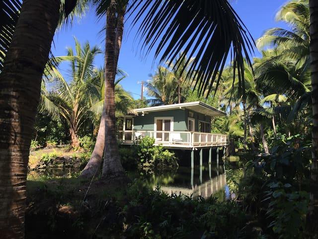 Kapoho Tiki Cottage - Pāhoa - Dům