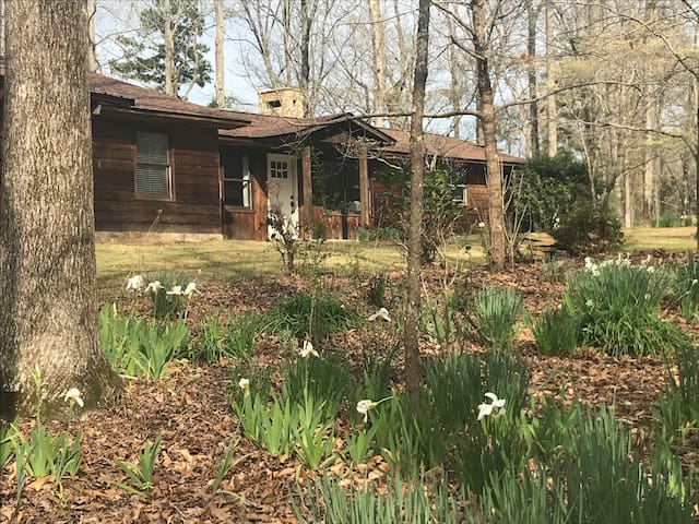 Iris Hill Completely Renovated Cabin in the Woods.