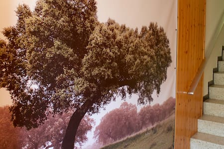 Casa adosada en zona tranquila - Sant Joan de Vilatorrada