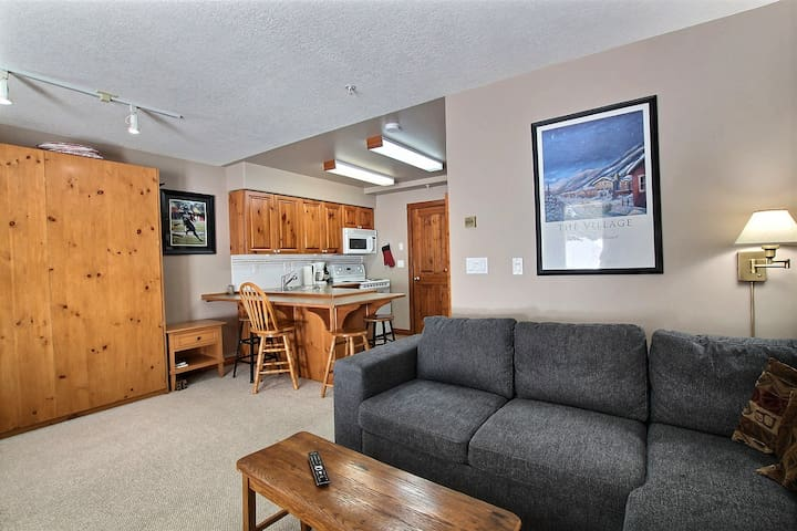 Kitchen, living room, with very comfortable queen murphy bed.