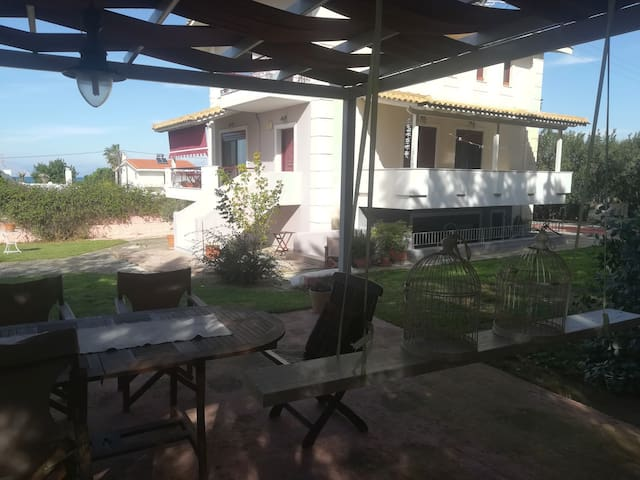 House with big garden in Kaminia