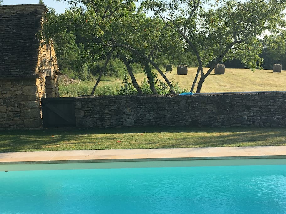 Looking from the pool to the meadow beyond.