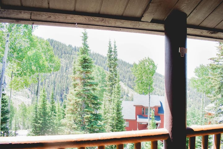 Eagle Point Ski Resort • Snowflake Nº15