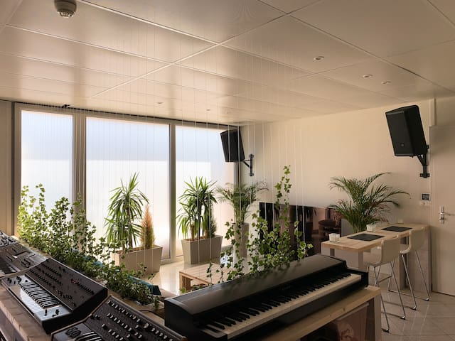 Atypic composer-songwriter's studio-loft