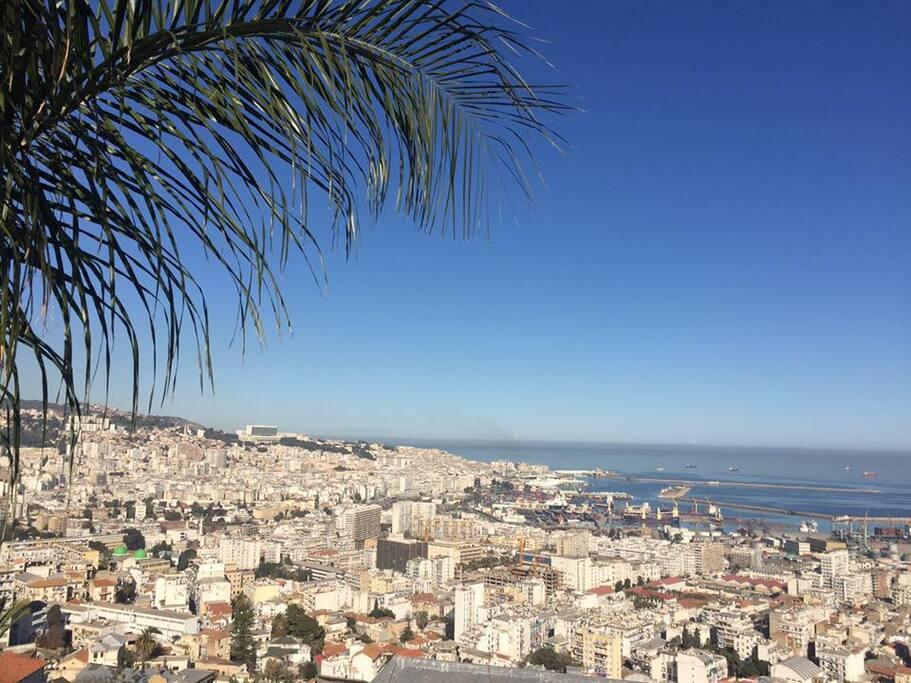 vue imprenable sur la baie d'Alger