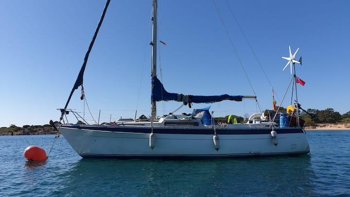 Sailing boat in Tavira Sail discover enjoy!