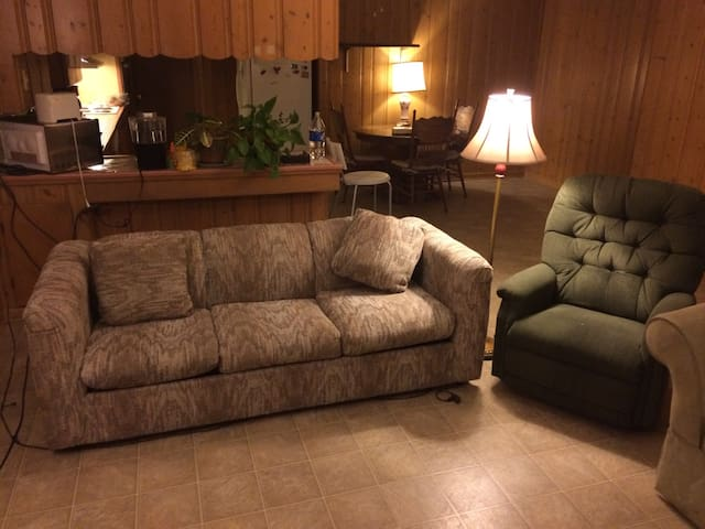 Comfy couch in South Tyler - Tyler - House