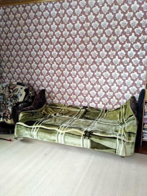 Зал с диван-кроватью на 2 спальных места.