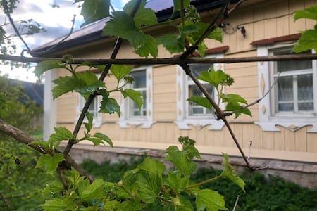 Уютный дом  с баней на природе