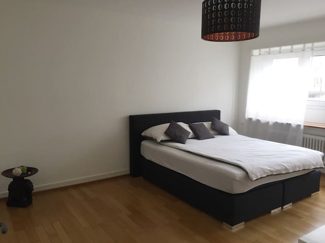 Lovely and comfy room - Basel - Daire