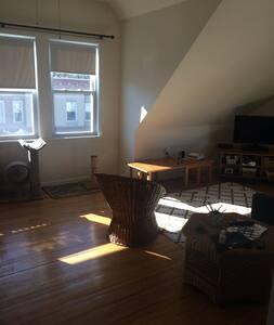 Sunny Arlington Heights Apartment