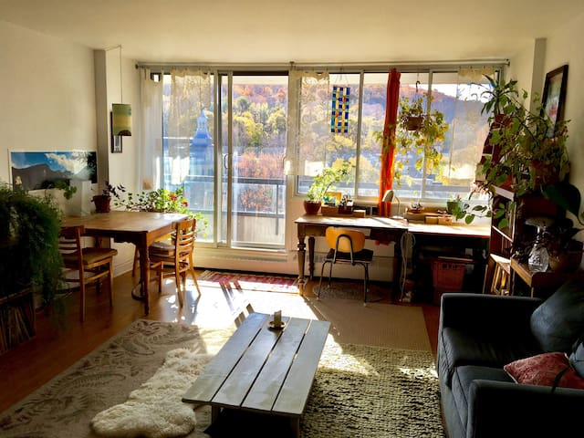 Sunniest nest in heart of  Montreal - Montreal - Apartamento