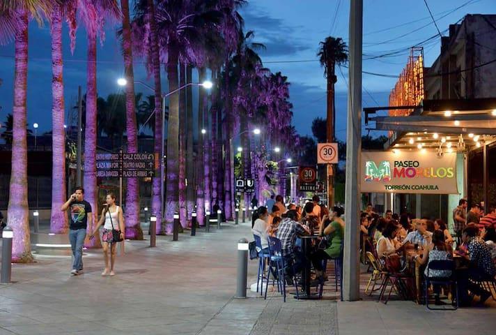 Restaurantes y Bares (Paseo Morelos)