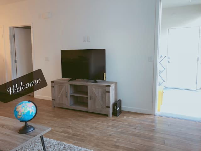 Silicon Valley Entire Luxury Large 1B/1B Apartment