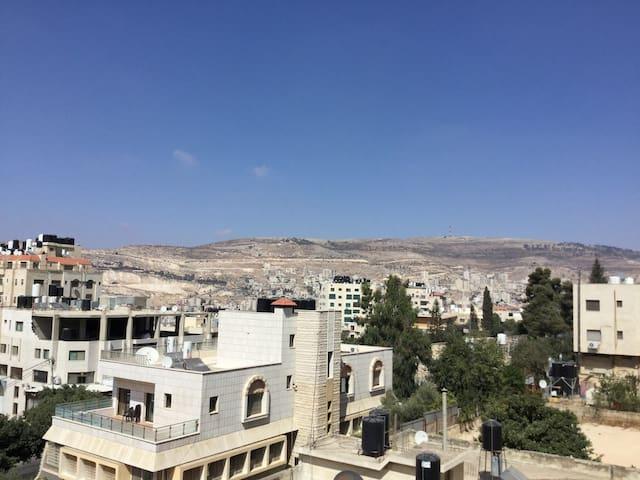 شقة مميزة مفروشة - Unique furnished flat Nablus