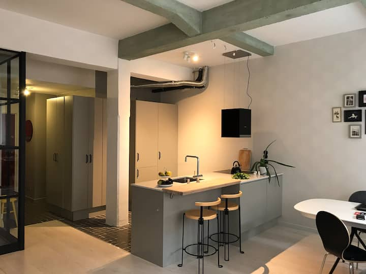Modern studio apartment with industrial heritage