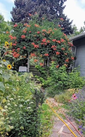 Nikki's Garden in Old Town Westside Neighborhood