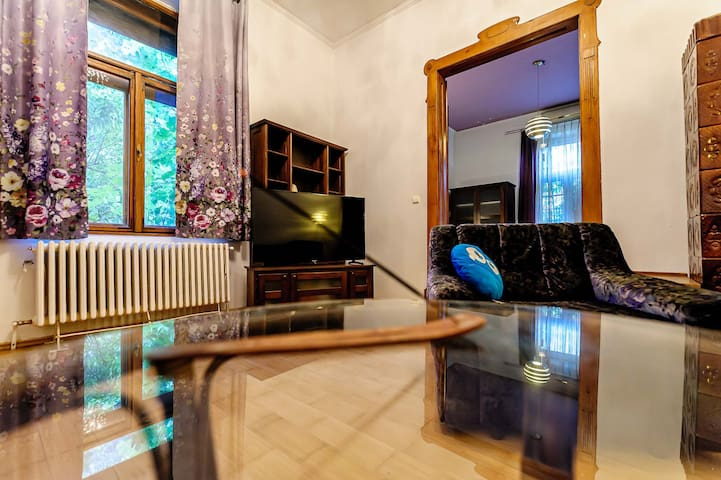 Peacefull apartment in the city center.