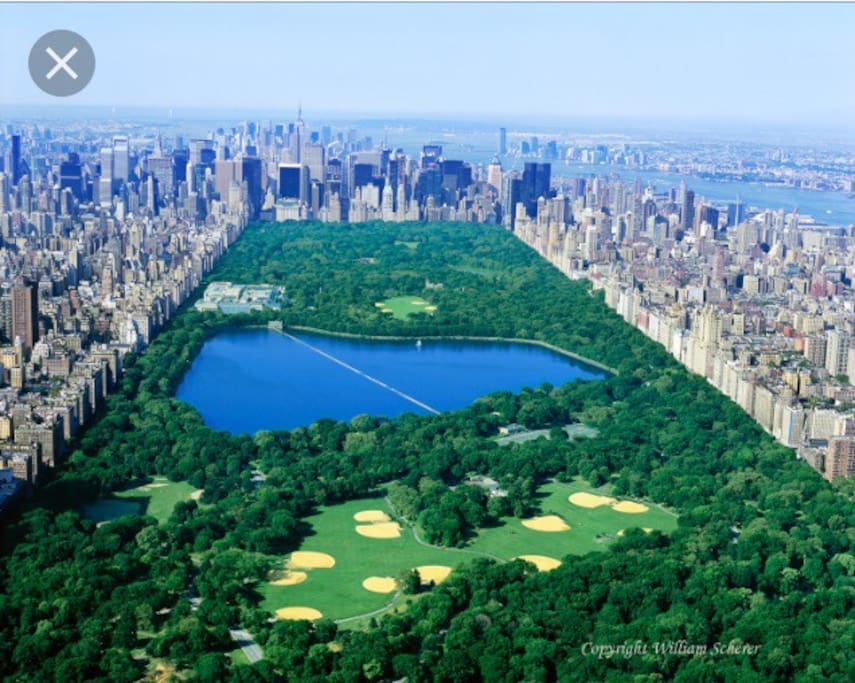 Beautiful Central Park - so many things to do in the Summer and Winter!