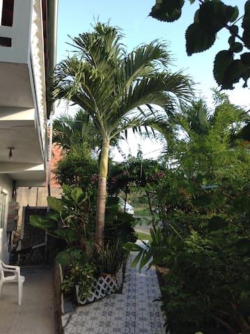 Duke's Garden Side Apartment