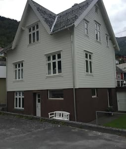 A house in  the middel of Hellesylt - Hellesylt - Apartment