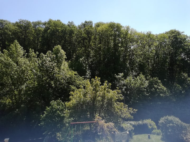 Gîte de Longchêne, BULLION